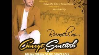 CÜNEYT ŞENTÜRK  full Albüm