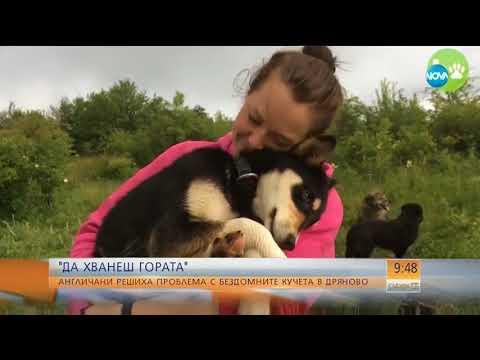 Street Hearts Bulgaria on NOVA, Bulgarian National Television