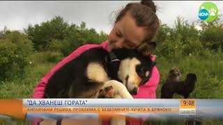 Street Hearts Bulgaria on NOVA, Bulgarian National Television