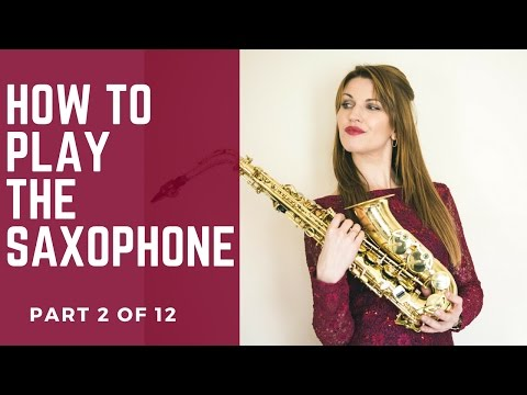 2/12 FIRST 4 NOTES. How to play saxophone - BEST BEGINNERS GUIDE 🎶 lesson/tutorial