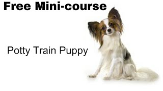 **GR8** Potty Train Puppy Class - Free Course on Potty Train Puppy Class