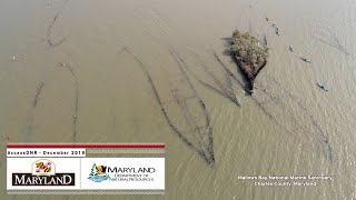 AccessDNR December 2019 - Maryland Department of Natural Resources