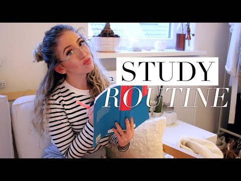 My Study Routine For Law School/University Exams