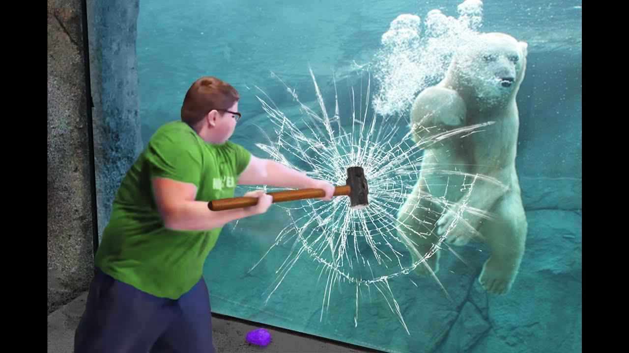 Download he broke the polar bear's glass...