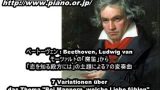 """レ・クロッシュ[Pf.宇宿真紀子 Vc.宇宿直彰] Beethoven: 7 Variationen über das Thema """"Bei Mannern, welche Liebe fühlen"""""""