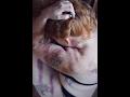 Αντίστροφη μέτρηση - Επεισόδιο 5ο - YouTube