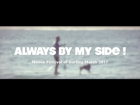 Always By My Side - Dog Surfing @ The Noosa Festival of Surf 2017