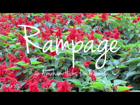 abraham-hicks:-rampage-of-money-grid