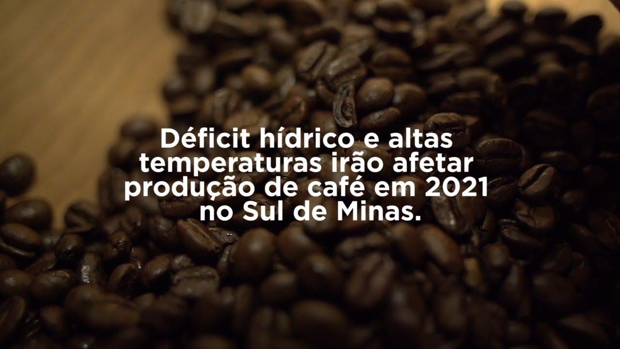 Déficit hídrico e altas temperaturas irão afetar a produção de café em 2021 no sul de Minas