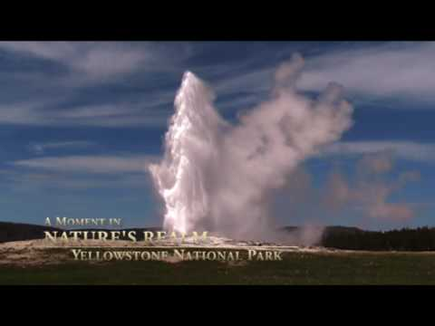 A Moment in Nature's Realm: Yellowstone Geysers (Old Faithful)
