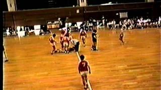 1995年関東学生ハンドボールリーグ 国際武道大vs明治大 東学大vs法政大