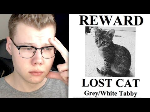 I LOST DUDE THE CAT.