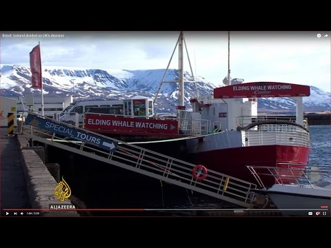 Brexit: Iceland divided on UK's decision