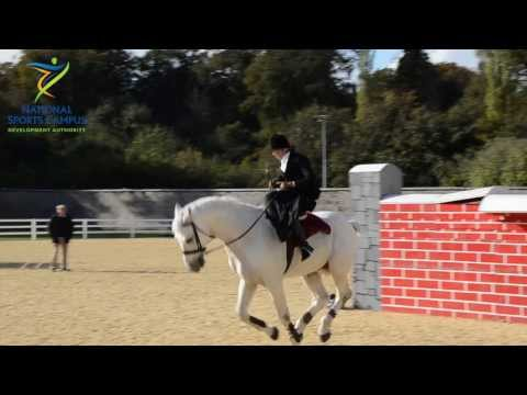 Susan Oakes - World Record - National Horse Sport Arena