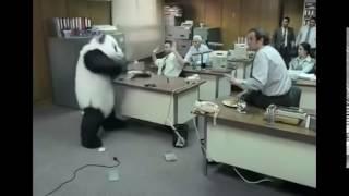 Panda imagine dragons