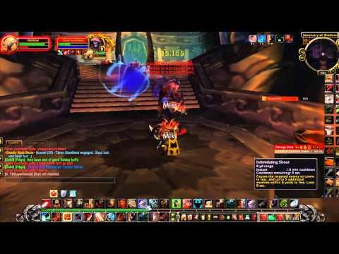 black temple sixth boss Teron Gorefiend fury warrior solo