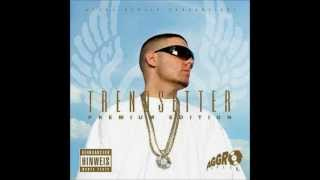FLER MEINE HOMIES ALBUM TRACK  12 TRENDSETTER PE