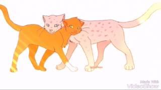 Белка и Уголек (коты воители).