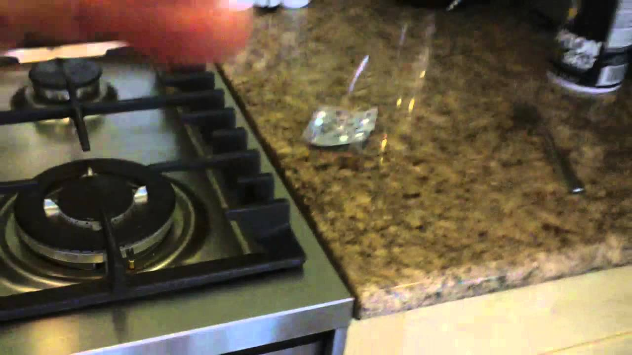 Fisher Paykel 30 Convection Oven Review