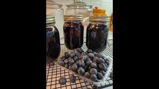 Blueberry Jam made with Organic Blueberries