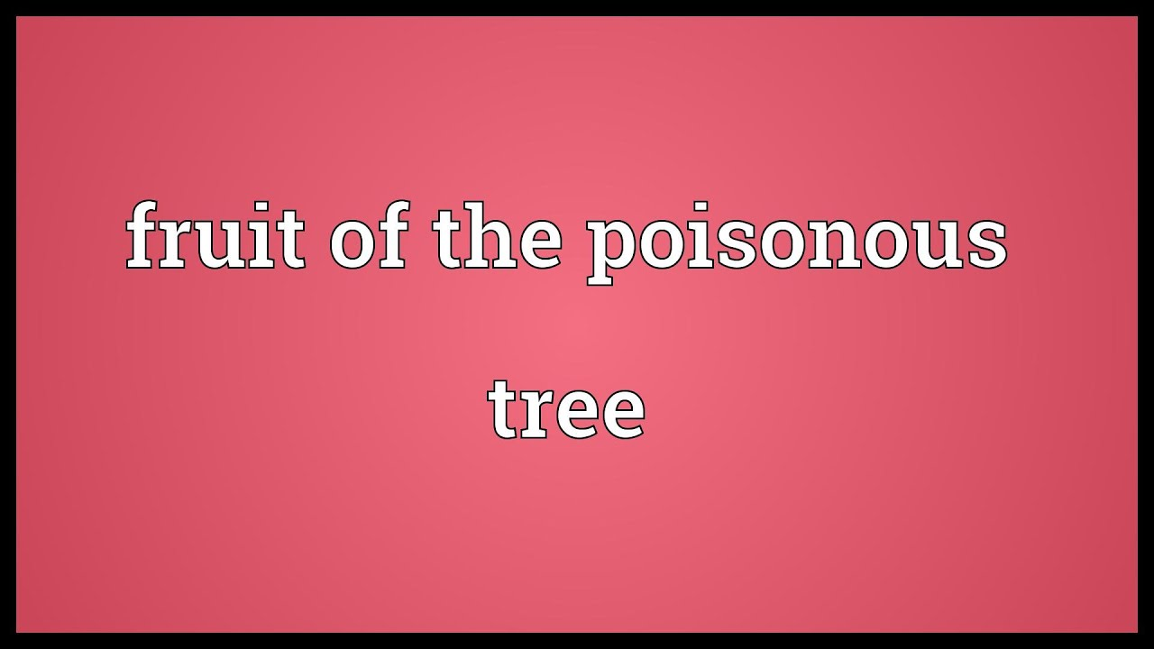 fruitful definition fruit from the poisonous tree