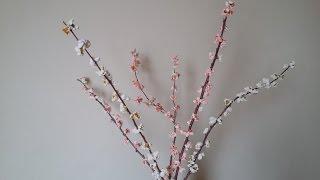Çok Kolay Bahar Dalı Yapılışı - Kendin Yap