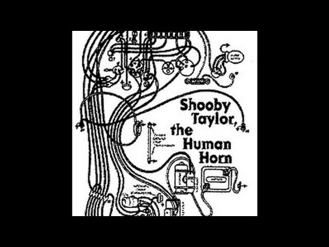 Shooby Taylor - Folsom Prison Blues