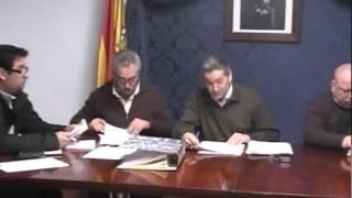 Pleno Febrero 2015