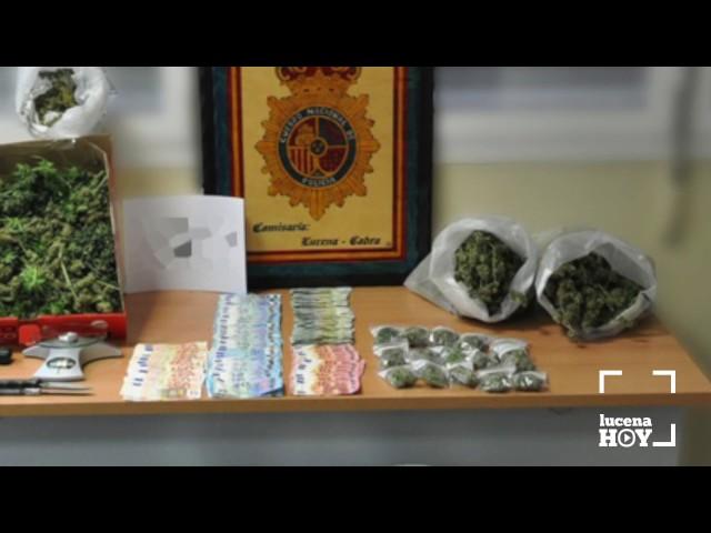 VÍDEO: La Policía Nacional desmantela una plantación de marihuana y detiene a un hombre