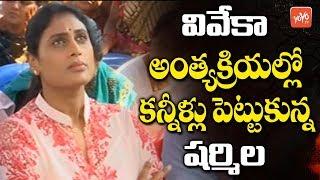 YS Sharmila Cries At YS Vivekananda Reddy Final Journey | AP News | YS Jagan | Pulivendula | YOYO TV
