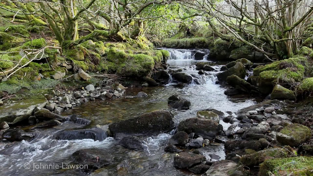 wallpaper peaceful flowing - photo #32