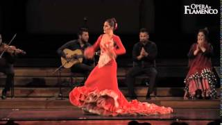 Opera y Flamenco - What we do (03)...