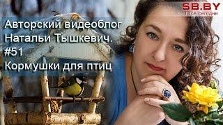#51 Кормушки для птиц - как кормить пернатых зимой