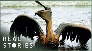 BP: $30 Billion Blowout (Documentary) - Real Stories