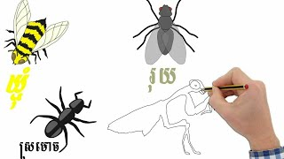 How to draw a pest