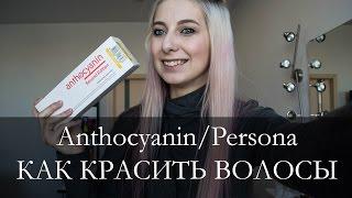 видео антоцианин купить