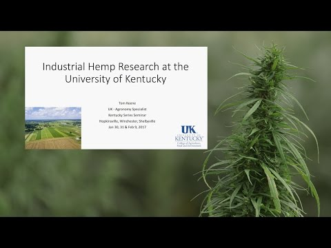 UK Industrial Hemp Research by Tom Keene