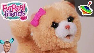 Озорные зверята котенок \ my bouncing kitty Furreal Friends