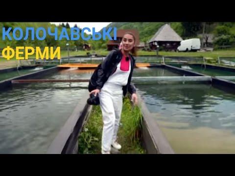 Еко-туризм у Колочаві