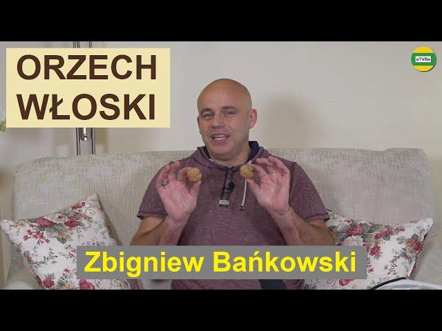 DLACZEGO WARTO STOSOWAĆ OLEJ Z ORZECHA WŁOSKIEGO cz.4 Zbigniew Bańkowski STUDIO 2021