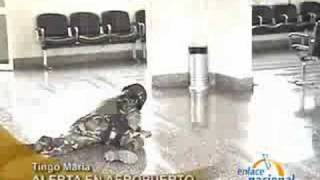 Huánuco: Alerta de bomba en aeropuerto de Tingo María