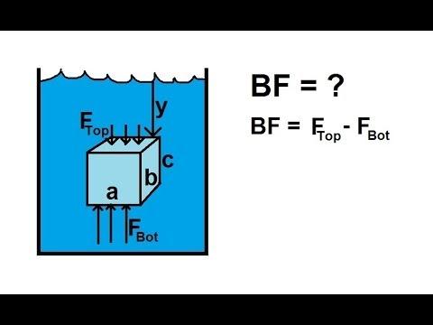 Physics - Fluid Statics (8 of 10) Buoyancy Force - YouTube