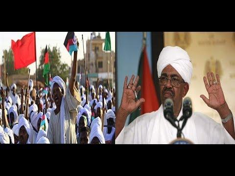 السودان.. هل يصمد نظام البشير في وجه المظاهرات؟