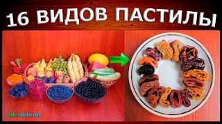 видео Пастила в сушилке для овощей и фруктов