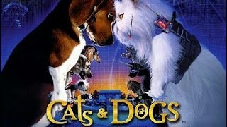 Cats and dogs in tamil