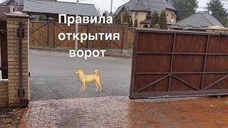 Правила ОТКРЫТИЯ ВОРОТ для собак.  Кане корсо Бафи
