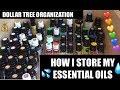 Dollar Tree DIY💧Essential Oils Storage System