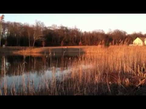 Oyster Rocks Retention Pond