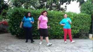 BALLI DI GRUPPO UFFICIALI SUNSHINE - A Mi Me Gusta Bailar El Ritmo Vuelta