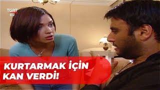 Gambar cover Yıldız, Yaları Berşan'a Kan Verdi - Aşkına Eşkıya 12. Bölüm